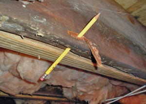 Destroyed crawl space structural wood in Hendersonville